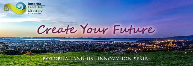 Land Use Innovation Series logo